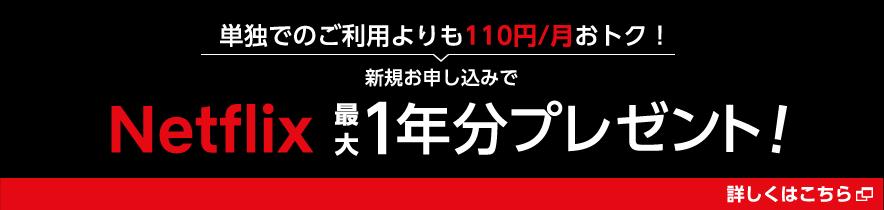 単独でのご利用よりも110円/月おトク!新規お申し込みでNetflix最大1年分プレゼント!草しくはこちら